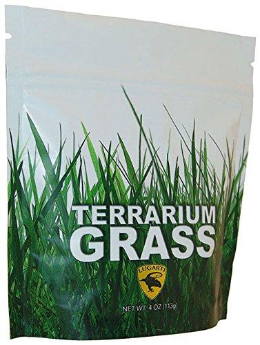 Lugarti Terrarium Grass