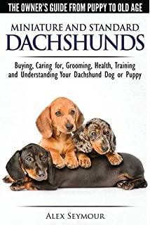 Dachshund attack training