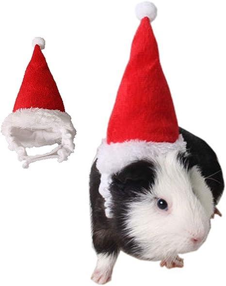 CAFFER pequeño Animal Vacaciones y Navidad Sombrero, Erizo hámster ...