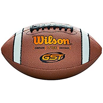 1d66d343ffa Amazon.com   Wilson TDS Composite Football - Official Size ...