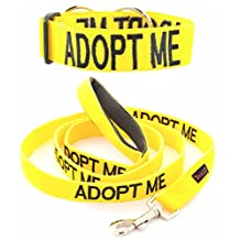 """""""ADOPT ME"""" Yellow Color Coded Nylon Dog Collar & Padded Leash Set (DOG IN NEED OF A LOVING HOME) PREVENTS Dog Accidents By Warning Others Of Your Dog In Advance! Strong As Leather & Chain by Dexil"""