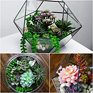 12 Fake Succulent Plants Realistic- Artificial Succulent Plants- Large Faux Succulents Unpotted- Hanging Floral Succulent Cuttings Arrangement- Outdoor And Indoor- Wall Decor -Easy DIY With Stems 5