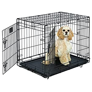 Medium Dog Crate | MidWest Life Stages 30″ Double Door Folding Metal Dog Crate | Divider Panel, Floor Protecting Feet & Dog Tray | 31.375L x 22.5W x 23.5H Inches, Medium Dog Breed
