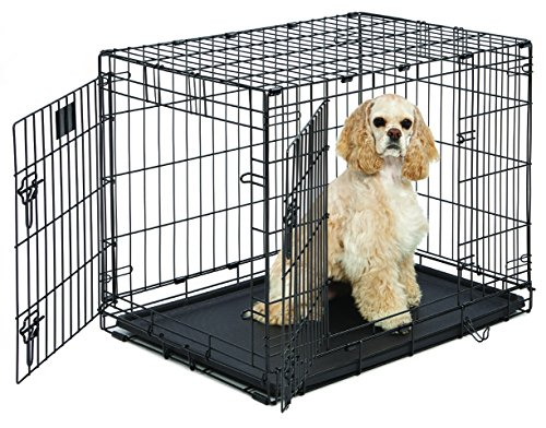 Medium Dog Crate | MidWest Life Stages 30' Double Door Folding Metal Dog Crate | Divider Panel,...