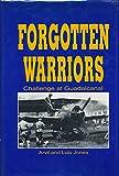 img - for Forgotten Warriors book / textbook / text book