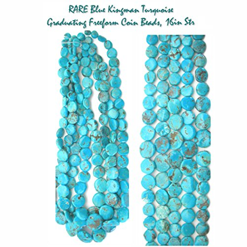 Graduating RARE Blue Kingman Turquoise Freeform Gemstone Coin Beads for Jewelry Making, 16 inch (Turquoise Coin Beads)