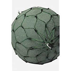 """Wayhome Fair 2 Floral Foam Netted 6"""" Spheres, Oasis - Excellent Home Decor - Indoor & Outdoor 46"""
