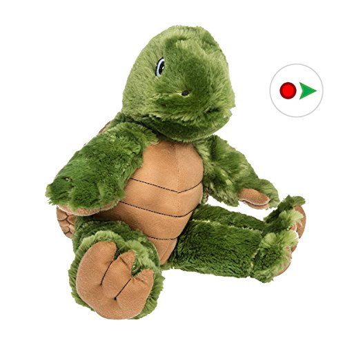 Record Your Own Plush 16 inch Green Turtle - Ready To Love (Snapping Turtle Shell)