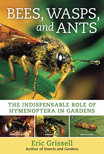 Bees, Wasps, and Ants: The Indispensable Role of Hymenoptera in Gardens ()
