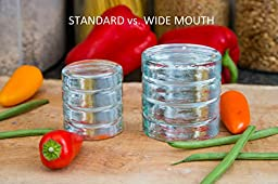 Pickle Pebbles PLUS - Wide Mouth Glass Fermentation Weights for Small-Batch Mason Jar Fermentation - WIDE MOUTH - 4 Pack