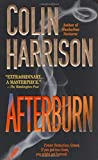 Afterburn, Colin Harrison, 0374102058