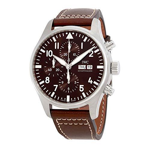 - IWC Pilot Antoine de Saint Exupery Chronograph Mens Watch IW377713
