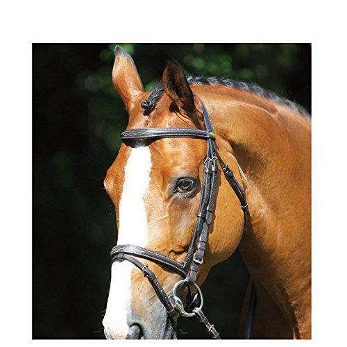 all'ingrosso a buon mercato Bridon Cabourg protanner Nero Nero Nero Cavallo  80% di sconto