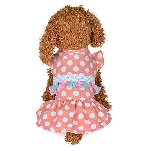 Geetobby Pet Dog Dot Fringed Skirt Puppy Kitten