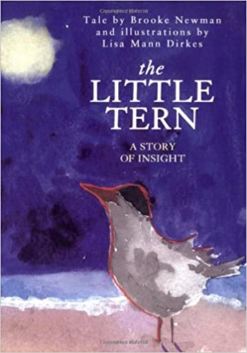 The Little Tern by Brooke Newman and illustrations by Lisa Mann Dirkes.