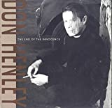 Don Henley: The End Of Innocence LP VG++ Canada Geffen XGHS 24217