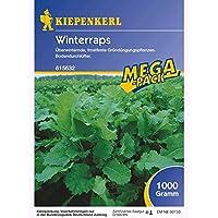 Winterraps Gründünger 1kg
