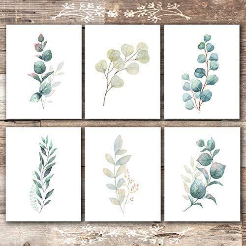 Botanical Prints Wall Art - Eucalyptus Leaves - (Set of 6) - Unframed - 8x10s (Words For Wall Art)
