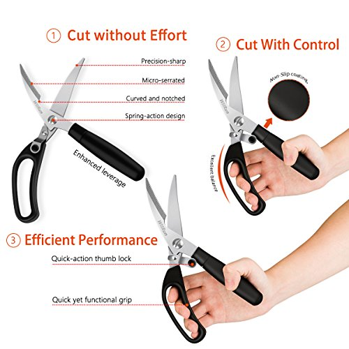 Kitchen Shears With Spring: Kitchen Shears, Poultry Heavy Duty Multi Purpose Scissors