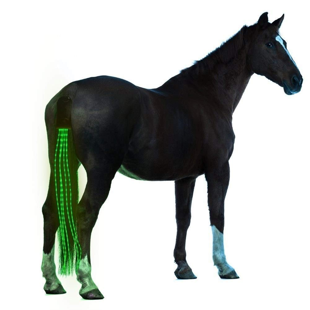 ZANGAO 100cm USB facturable Cheval arri/ère /à LED Lumi/ères /équitation Tails D/écoration Tubes Lumineux Chevaux de Selle /équestre Selle Halters Color : 100cm Long Green