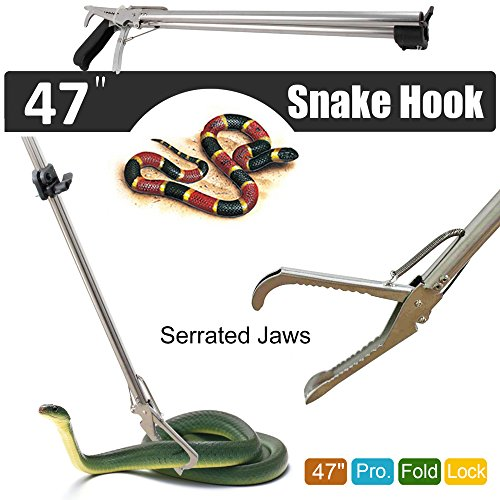 Fnova Professional Collapsible Rattlesnake Stainless product image