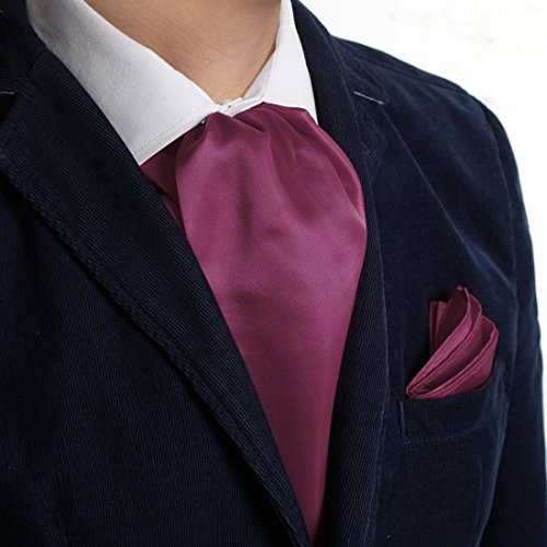 (Dan Smith DRC1E01C Orchid Solid Microfiber Best Shopstyle Ascot and Matching Handkerchief)