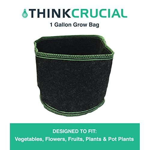 "Wholesale Durable 1 Gallon Fruit & Vegetables Reusable Grow Bag, 5.5"" x 7"" in., Soft-Sided Container, Perfect Grow Pot for Fruits, Vegetables, Indoors/Outdoors, by Think Crucial free shipping"
