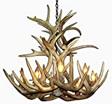 Real Antler Whitetail Deer Cascade Chandelier Light XXLarge Review