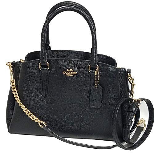 Coach MINI SAGE CARRYALL 2018 Collection -