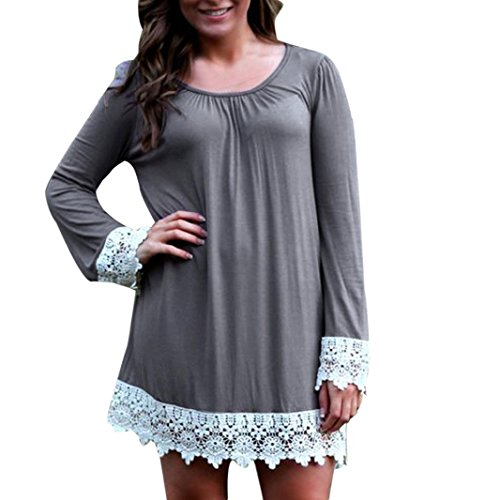 Lace Splicing Mini Dress, Luweki Womens Ladies Fashion O-Neck Casual (M, Gray)