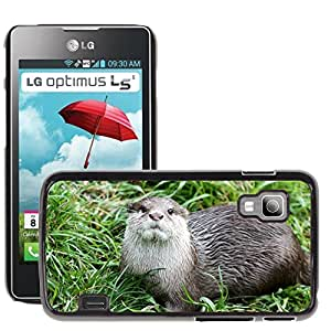 Hot Style Cell Phone PC Hard Case Cover // M00130992 Otter Animal Nature // LG Optimus L5 II Dual E455 / E460