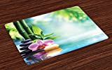 Ambesonne Spa Place Mats Set of 4, Symbolic Spa Features with Candle and Bamboos Tranquil and Thoughtful Life Nature Print, Washable Fabric Placemats for Dining Room Kitchen Table Decor, Multicolor