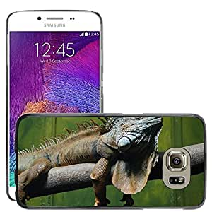 Hot Style Cell Phone PC Hard Case Cover // M00113974 Iguana Reptile Lizard Dragon Relaxed // Samsung Galaxy S6 (Not Fits S6 EDGE)