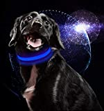 USB Rechargeable LED Dog Collar Flat Nylon Webbing Lighted Flashing Dog Collar Lights by MASBRILL Rechargeable Dog Collar LED Light-Up Safety Neck Loop (M, Blue)