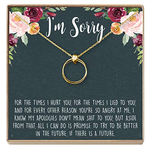 Dear Ava Apology Gift Necklace for Her: Gift to Say You're Sorry Best Friend, Girlfriend, Jewelry, 2 Linked Circles (Gold-Plated-Brass, NA)