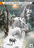 "landscape design pictures Coloring Calendar 2018 (12 pages 8""x11"") Winter Forest Landscapes Christmas FLONZ Vintage Designs for Grayscale Coloring"