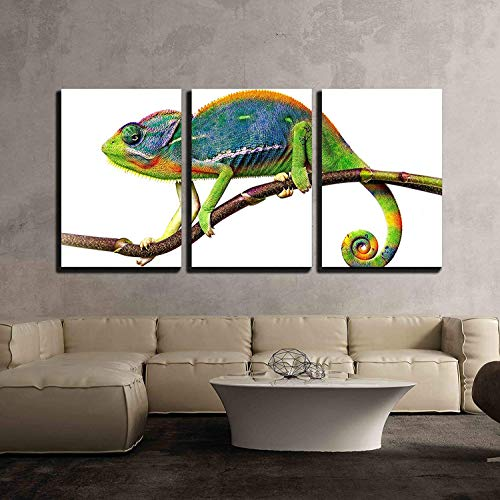Chameleon x3 Panels