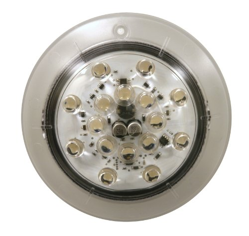 Jandy Nicheless Led Pool Lights in US - 1