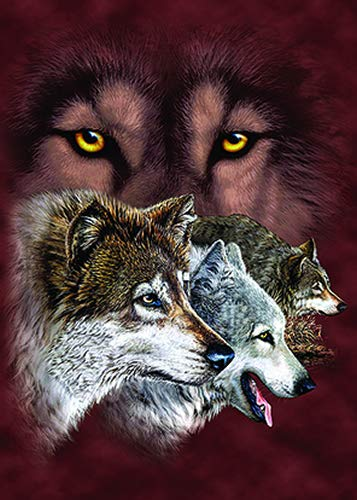 Photo Frame Wolf - 3D Home Wall Art Decor Lenticular Pictures, Wolf Collection Holographic Flipping Images, 12x16 inches Animal Poster Painting, Without Frame, Wolf Ruler