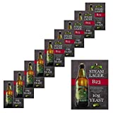 10x Bulldog B23 Steam Lager Yeast Craft Series Beer Yeast 10g for 20-25L