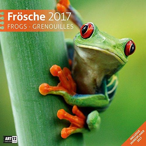Frösche 30 x 30 cm 2017