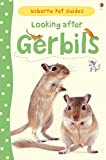 Looking After Gerbils (Usborne Pet Guides)