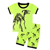 Boys Dinosaur Pajamas 100% Cotton Short Kids Pjs Summer Clothes Toddler Sleepwear Size 2T-7T (6, Green)