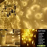 Neretva 600 LEDs Window Curtain String Lights, 19.68FTx9.84FT, 8 Modes Linkable, Twinkle Lights for Christmas Party Wedding Home Patio Outdoor Indoor Decorative Lights (Warm White)