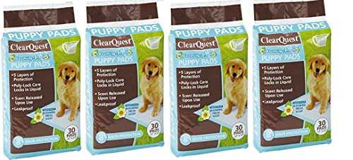 ClearQuest Blooming Fresh Puppy Pads, 100-Count Bag, Hold 2.5 Cups, Five Layers, Eight-Hour Protection, Scented to Attract Puppies