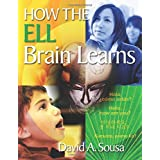 How the ELL Brain Learns