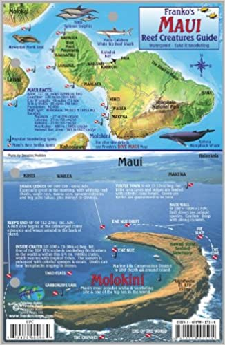 Hawaii Map Maui.Maui Hawaii Map Reef Creatures Guide Franko Maps Laminated Fish
