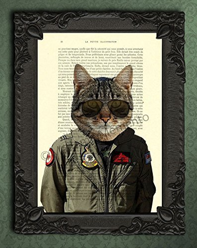 Fighter jet pilot portrait print, funny tiger cat decorations for living room, air force wall art ()