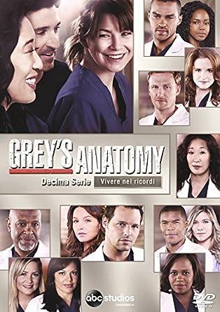 grey\'s anatomy - season 10 6 dvd box set dvd Italian Import: Amazon ...