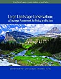 Large Landscape Conservation : A Strategic Framework for Policy and Action, McKinney, Matthew J. and Scarlett, Lynn, 1558442103